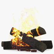 たき火バーニング 3d model