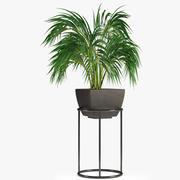 Jardim de plantas realista 3d model