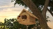 Fågelbox 3d model