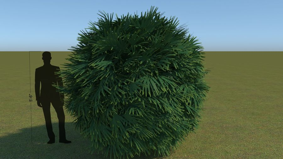 64 trees plants royalty-free 3d model - Preview no. 20