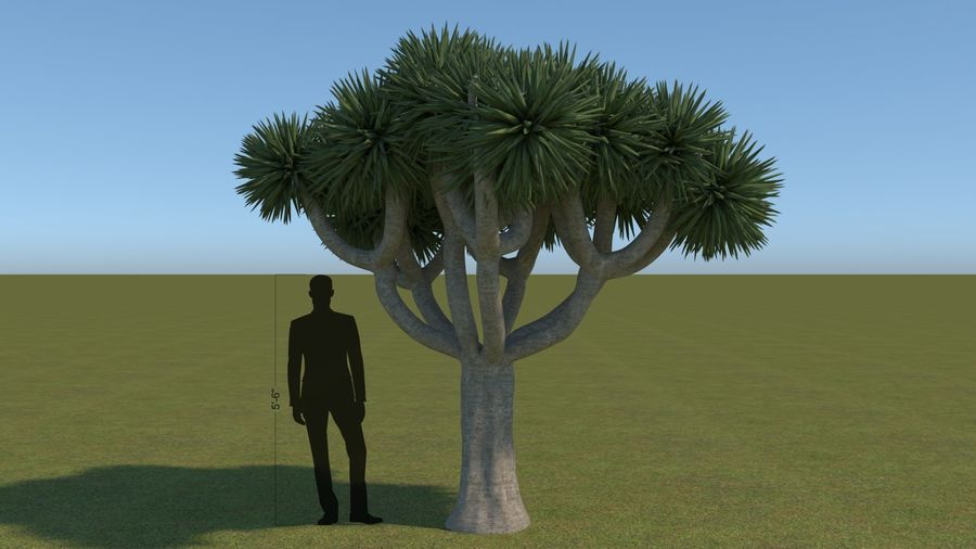 64 trees plants royalty-free 3d model - Preview no. 6