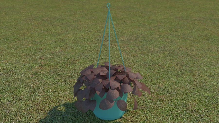 64 trees plants royalty-free 3d model - Preview no. 62
