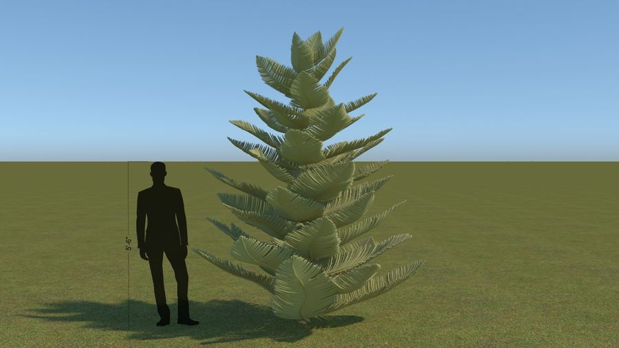 64 trees plants royalty-free 3d model - Preview no. 14