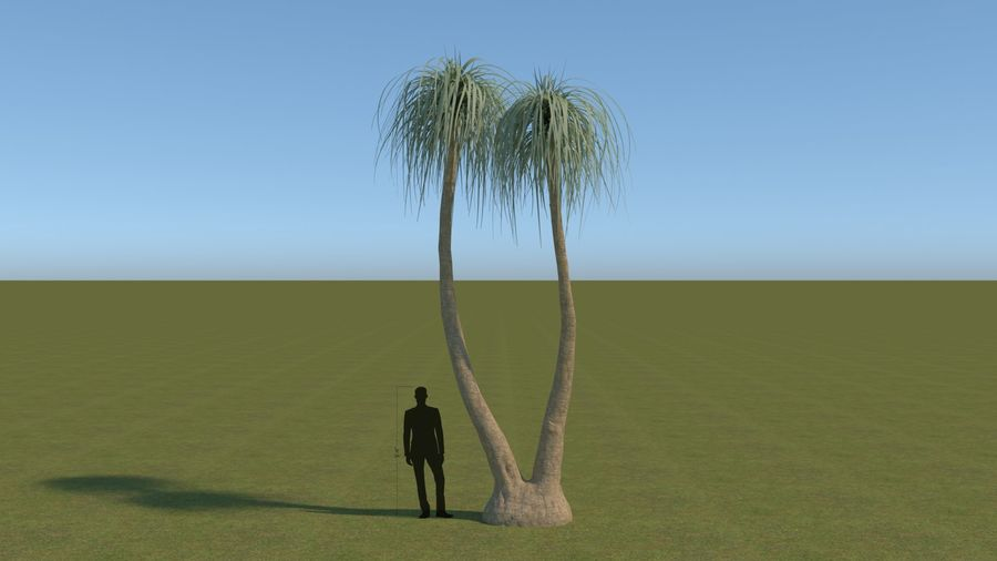 64 trees plants royalty-free 3d model - Preview no. 3