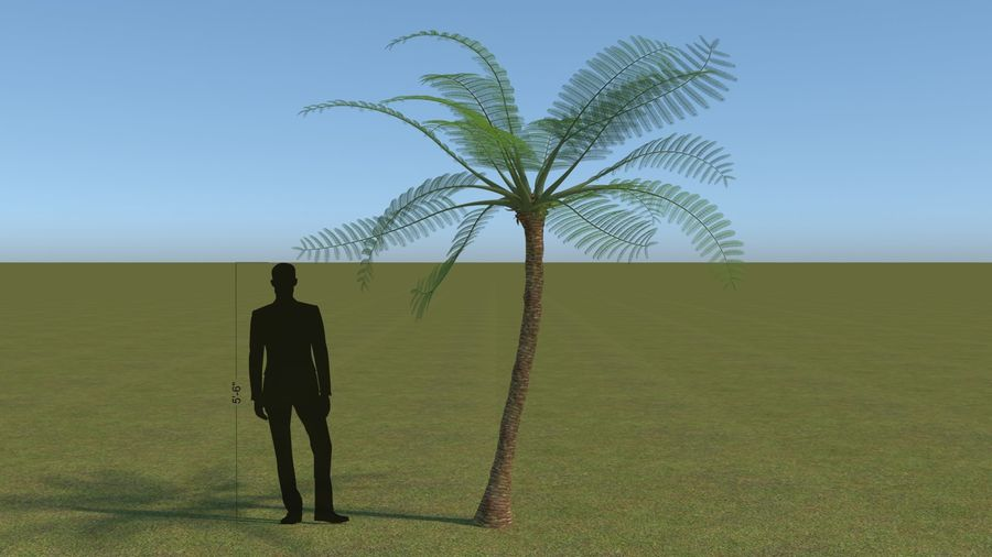 64 trees plants royalty-free 3d model - Preview no. 16