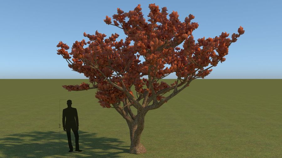 64 trees plants royalty-free 3d model - Preview no. 8