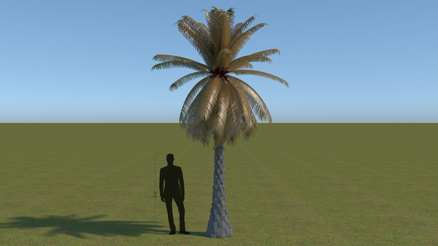 64 trees plants royalty-free 3d model - Preview no. 5