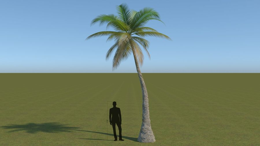64 trees plants royalty-free 3d model - Preview no. 2
