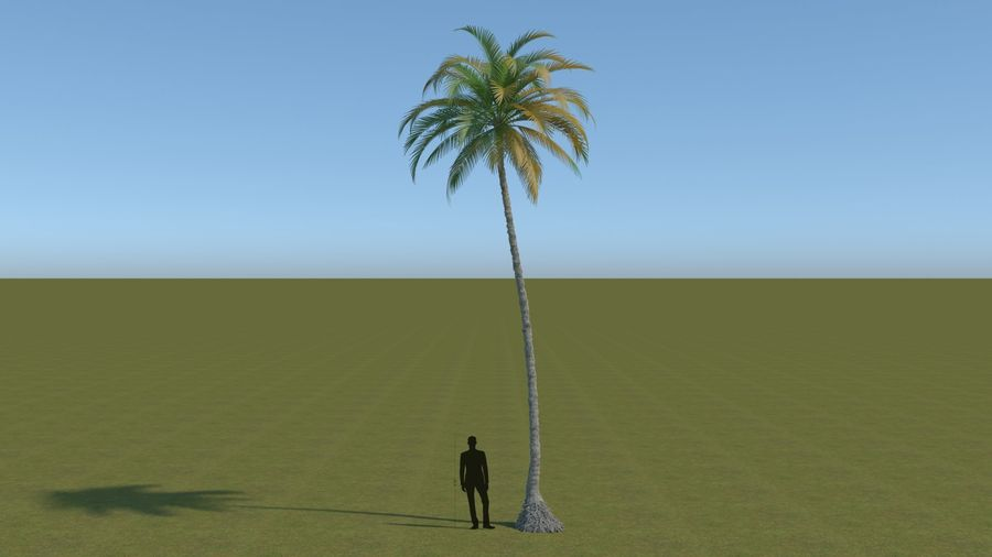 64 trees plants royalty-free 3d model - Preview no. 1
