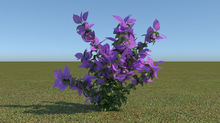 64 trees plants royalty-free 3d model - Preview no. 50