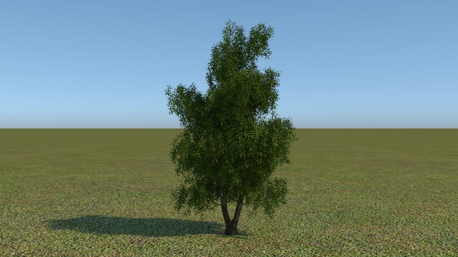 64 trees plants royalty-free 3d model - Preview no. 23