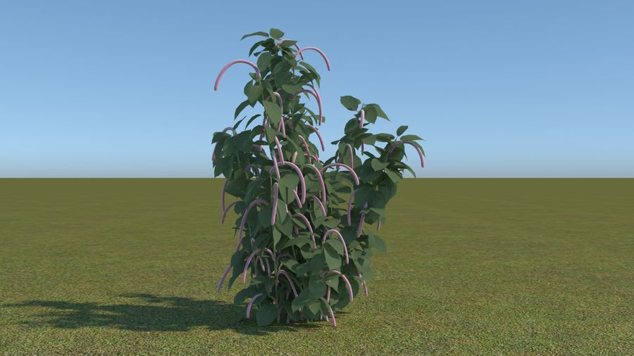 64 trees plants royalty-free 3d model - Preview no. 30