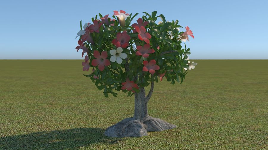 64 trees plants royalty-free 3d model - Preview no. 48