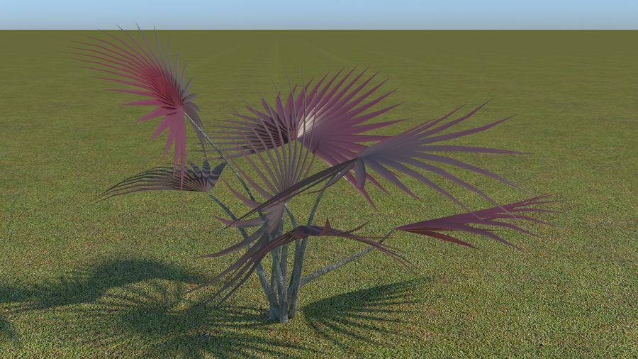 64 trees plants royalty-free 3d model - Preview no. 51