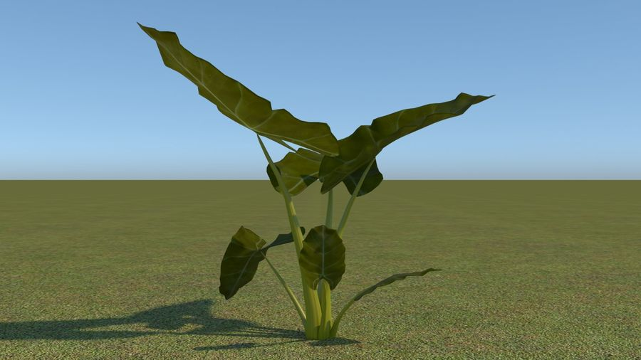 64 trees plants royalty-free 3d model - Preview no. 35