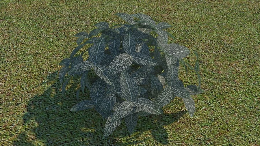 64 trees plants royalty-free 3d model - Preview no. 59