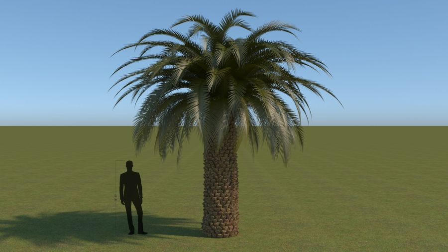 64 trees plants royalty-free 3d model - Preview no. 4