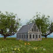古老的历史建筑 3d model