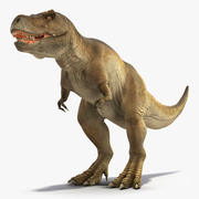 Animerad Tyrannosaurus Rex Waiting Rigged 3d model