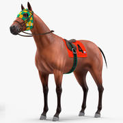 Bay Racehorse Rigged for Maya 3d model