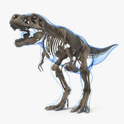 Tyrannosaurus Rex Skeleton Fossil with Skin 3d model