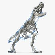Tyrannosaurus Rex Skeleton with Skin Standing Pose 3d model