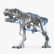 Tyrannosaurus Rex Skeleton with Skin Walking Pose 3d model