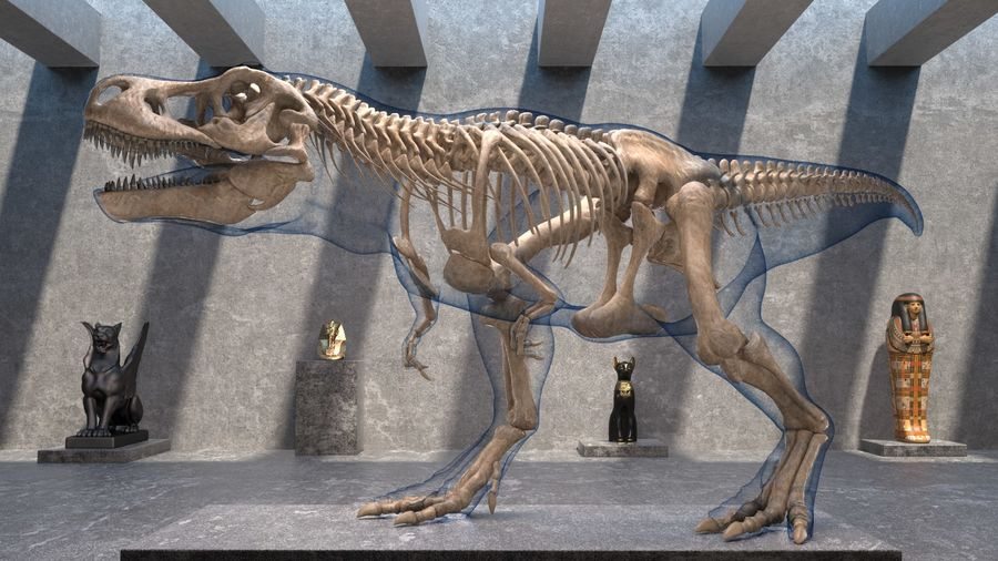 Tyrannosaurus Rex Skeleton Fossil with Skin Walking Pose royalty-free 3d model - Preview no. 3