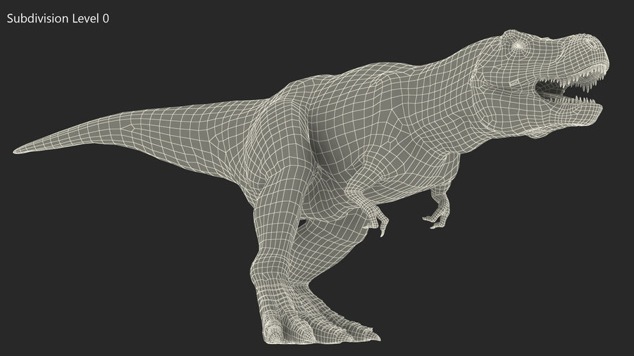 Tyrannosaurus Rex Skeleton Fossil with Skin Walking Pose royalty-free 3d model - Preview no. 15