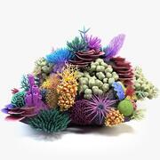 Coral Reef 01 3d model
