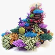 Коралловый риф 02 3d model