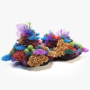 Arrecife de coral 03 modelo 3d