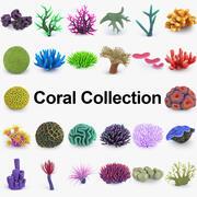 Coleção de recifes de coral 3d model