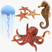 Collection d'animaux sous-marins 2 3d model