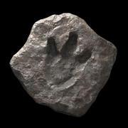 Fossile d'empreinte de dinosaure 3d model