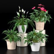 Conjunto de coleta de plantas 1 3d model