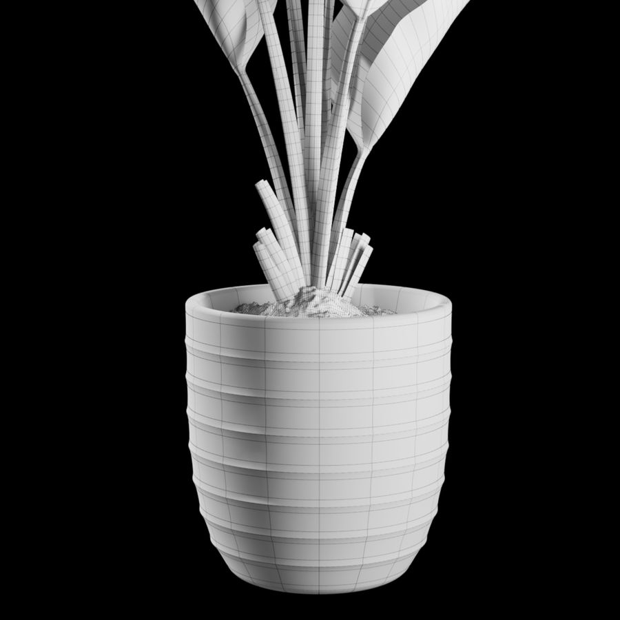 Indoor Plants Set 01 royalty-free 3d model - Preview no. 4