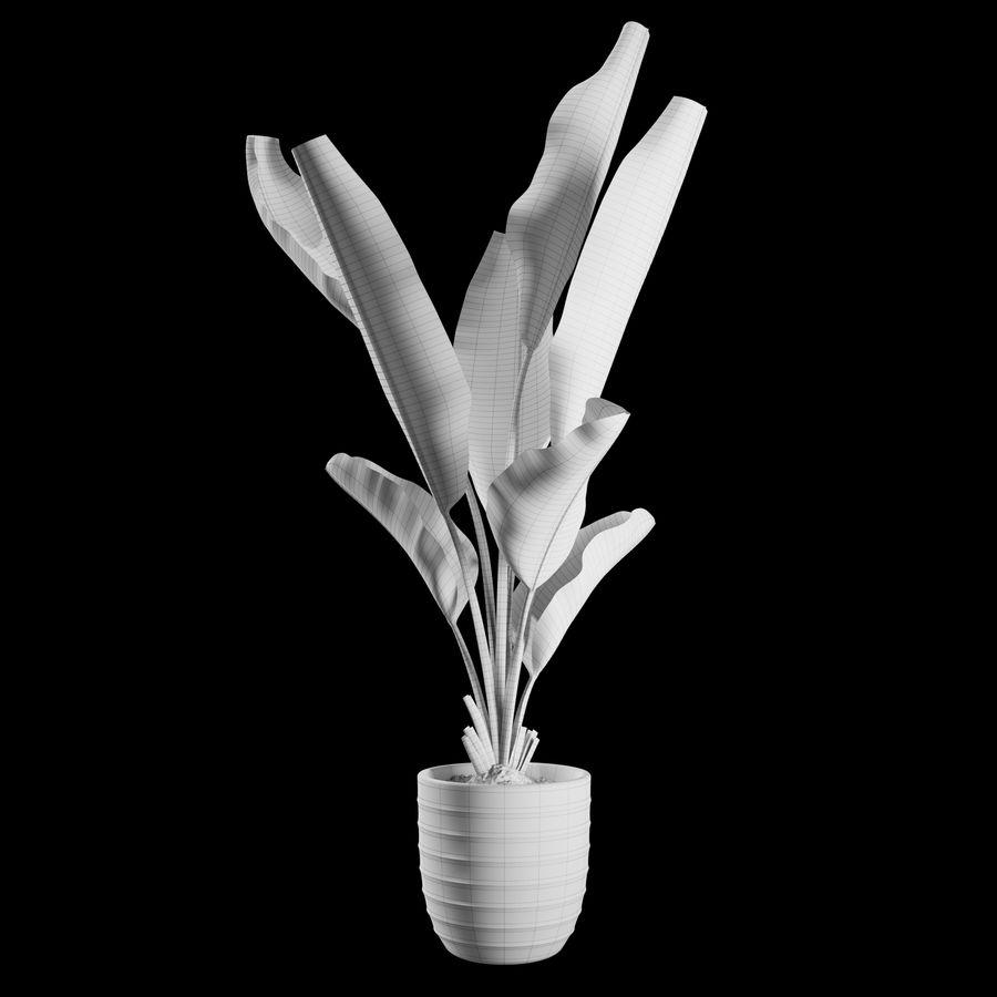 Indoor Plants Set 01 royalty-free 3d model - Preview no. 2