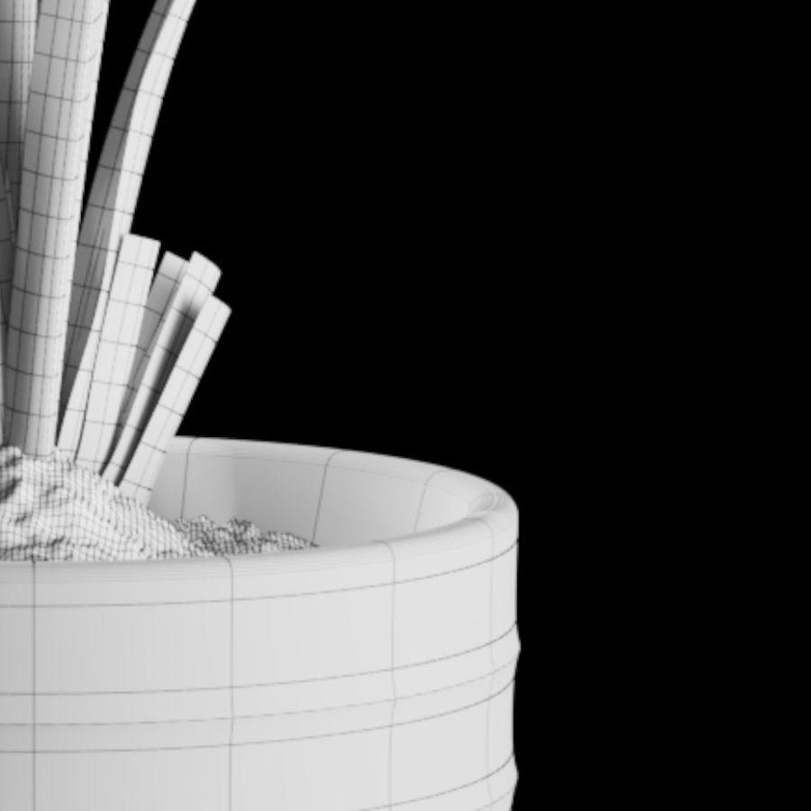 Indoor Plants Set 01 royalty-free 3d model - Preview no. 8