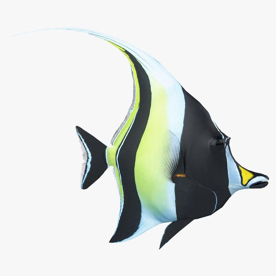 Zanclus Cornutus Korallenriff Fisch royalty-free 3d model - Preview no. 1