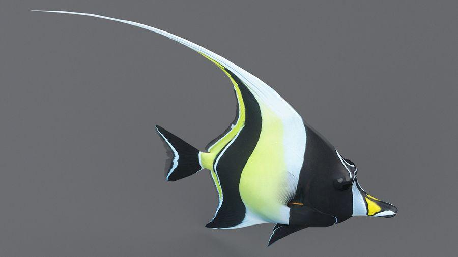 Zanclus Cornutus Korallenriff Fisch royalty-free 3d model - Preview no. 8