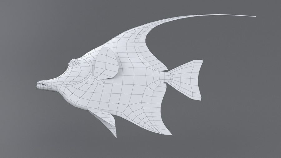 Zanclus Cornutus Korallenriff Fisch royalty-free 3d model - Preview no. 13