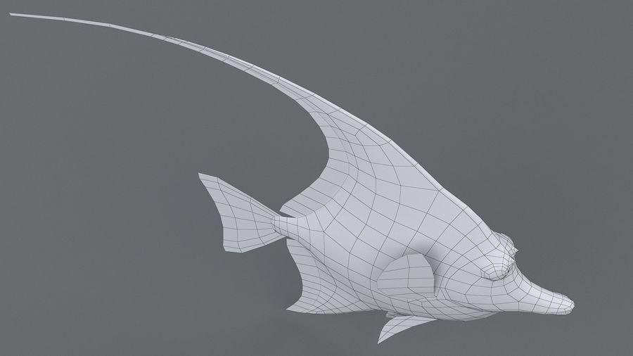Zanclus Cornutus Korallenriff Fisch royalty-free 3d model - Preview no. 14