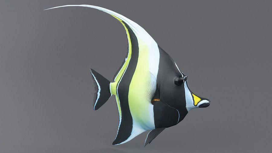 Zanclus Cornutus Korallenriff Fisch royalty-free 3d model - Preview no. 2