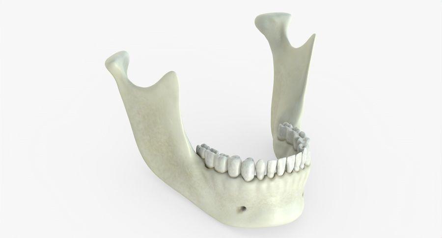 Человеческий череп royalty-free 3d model - Preview no. 32
