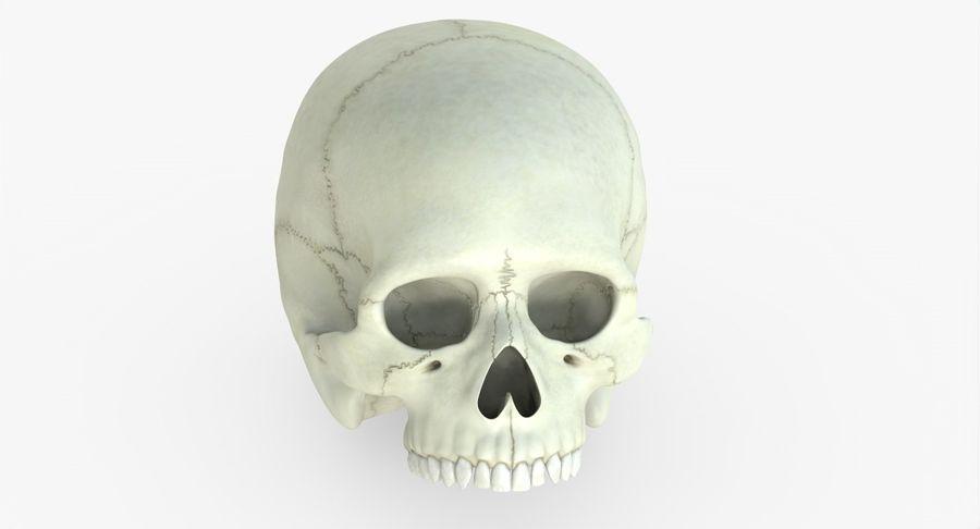 Человеческий череп royalty-free 3d model - Preview no. 33