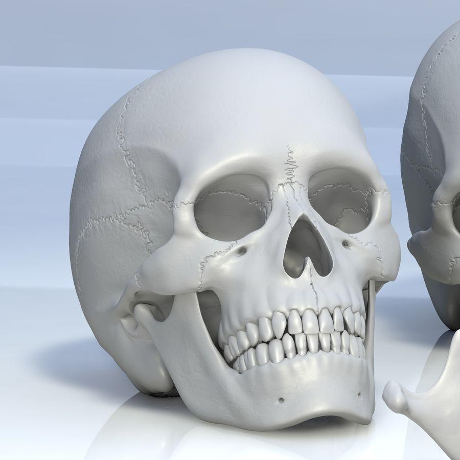 Человеческий череп royalty-free 3d model - Preview no. 17