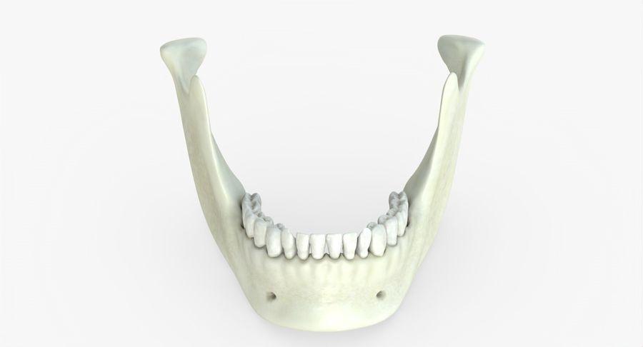 Человеческий череп royalty-free 3d model - Preview no. 30