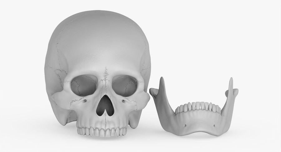 Человеческий череп royalty-free 3d model - Preview no. 29