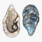 Live Oysters Pose 2 3d model